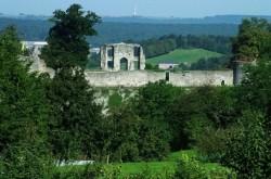 Activite_Plus-Vestiges-du-Chateau-Comtal-de-Rochefort-11701