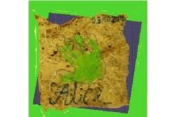 Brin d'Alice 1