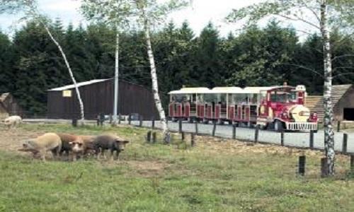 parc animalier entre ferme et for t. Black Bedroom Furniture Sets. Home Design Ideas