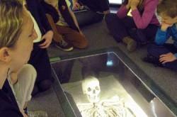 Musée de Mariemont - 009 LIMITE