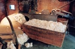 Parcours laine - léviathan